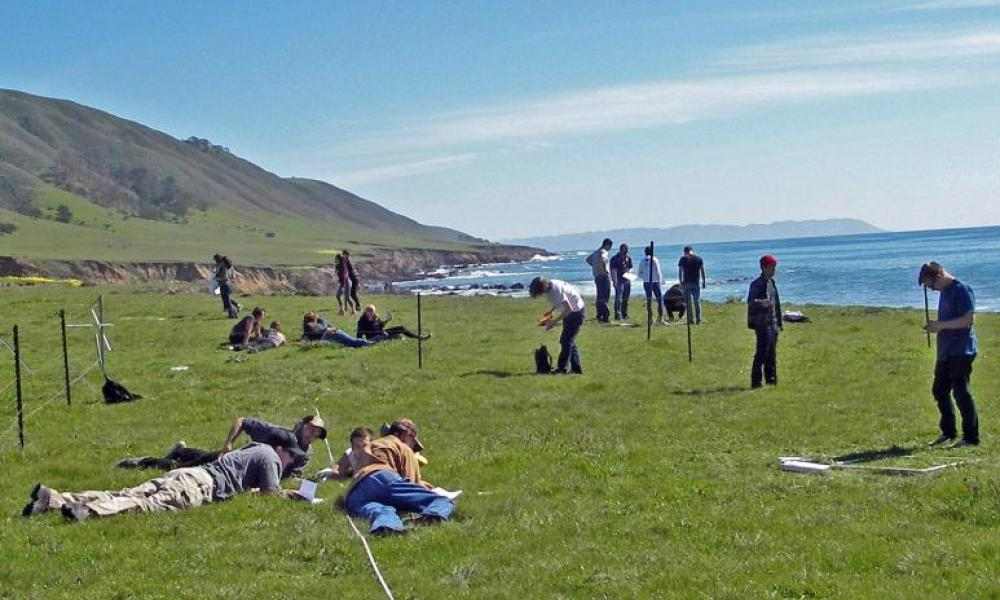 Students working on the lawn at the beach